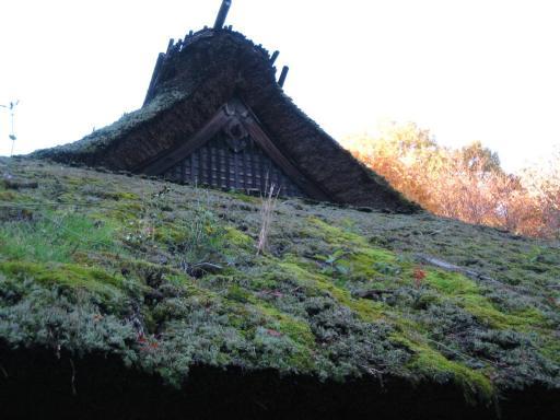 旧荻野家の茅葺き屋根