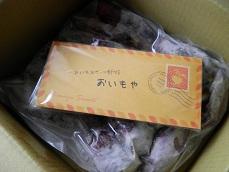 oimoya1.jpg