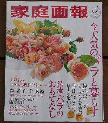20100411duashdioah.jpg