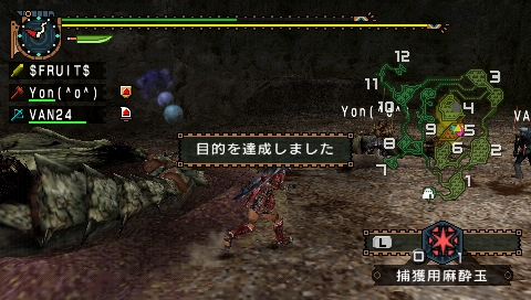 MHP2G 12.jpg