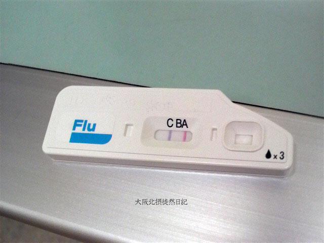 20130204_インフルエンザ_A型