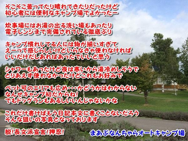 20140913-3.jpg