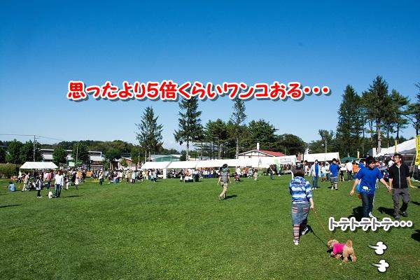20140921-4.jpg