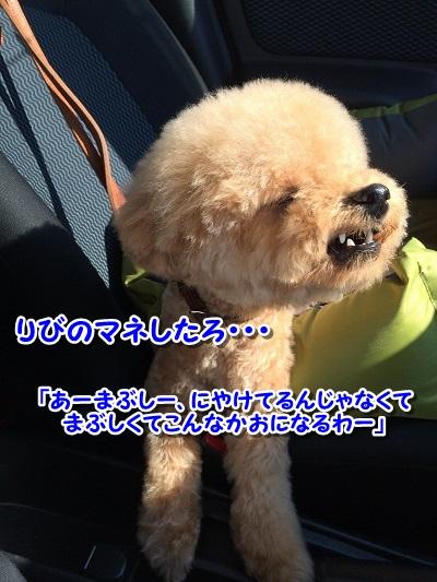 20140922-7.jpg
