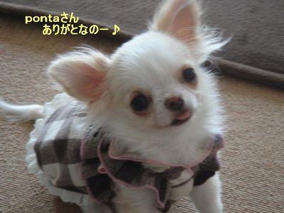 yujyuchan2.jpg