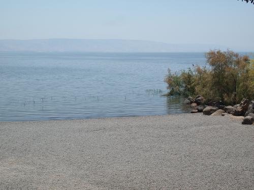 ガリラヤ湖畔