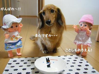 かなり放置されてた人形達。見ればメル村さんの帽子が変色してた!!