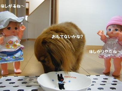 今気が付いたが、お皿の絵(ガスバール)がちゃんとコッチ向いてた。無意識で意識してた模様。