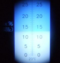 糖度計は13度を示しています。これはまだまだ少数派。