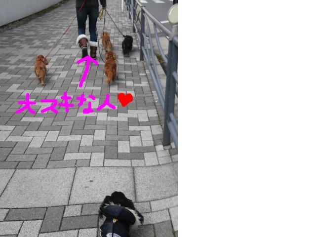 snap_mc985_201133123014.jpg