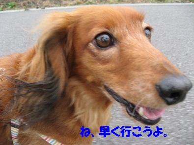 IMG_1490.jpg