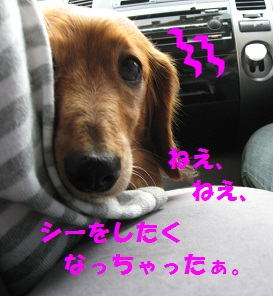 IMG_1583.jpg