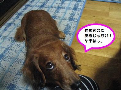 IMG_2483.jpg
