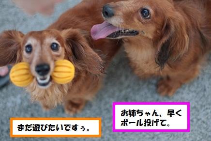 IMG_7957.jpg