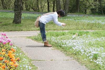 花の公園29