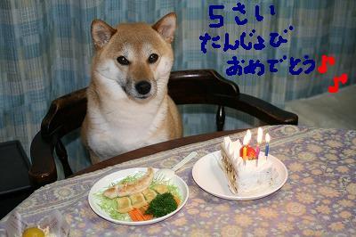 モモ様誕生日3加工