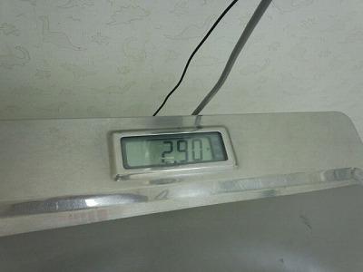 2012.8.15ココ様体重