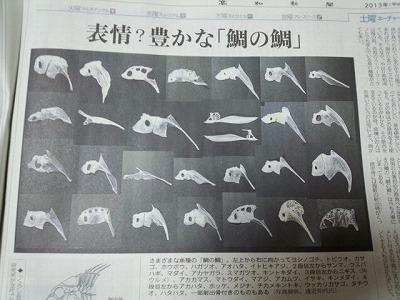鯛の鯛の記事