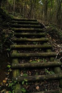 登山口の階段