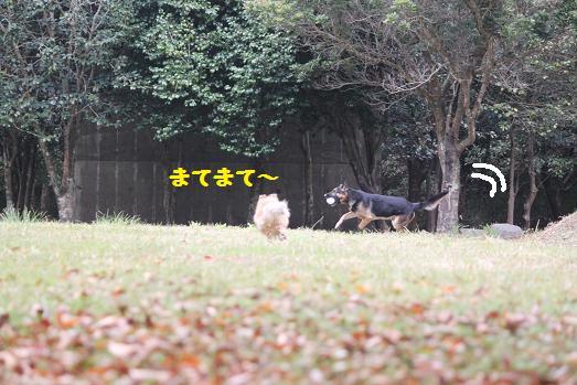 201011204.jpg