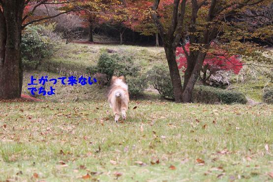 201011208.jpg