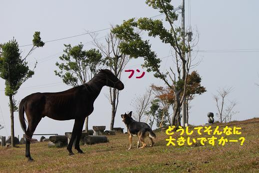 20101213.jpg