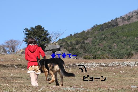 20101276.jpg
