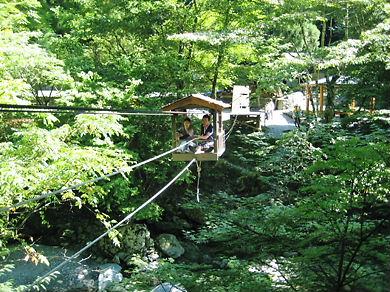 徳島  奥祖谷かづら橋