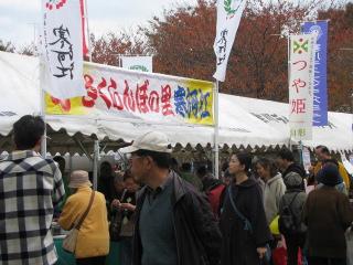 2010-11-23-6.jpg