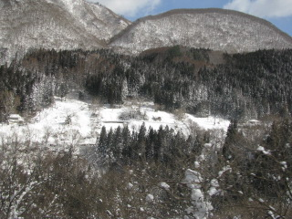 2010-2-10-12.jpg