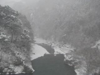 2010-2-11-1.jpg