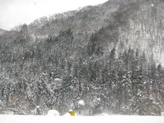 2010-2-11-13.jpg