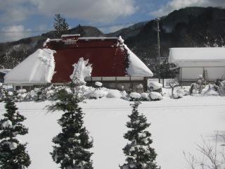 2010-2-11-14.jpg