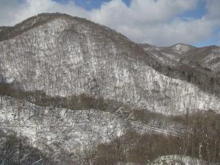 2010-2-11-15.jpg