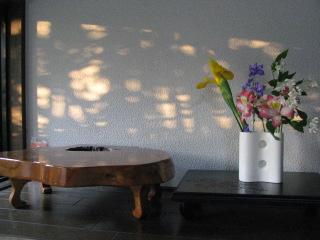 2010-5-5-6.jpg