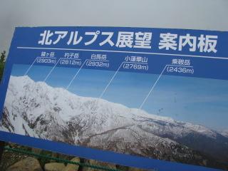 2010-8-8-29.jpg