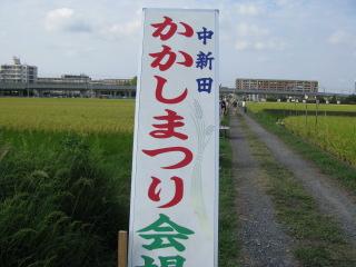 2010-9-19-8.jpg