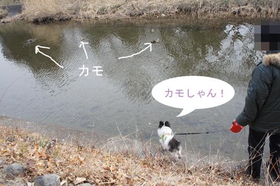 DSC01472_2.jpg
