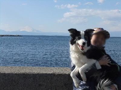 120218富士山6