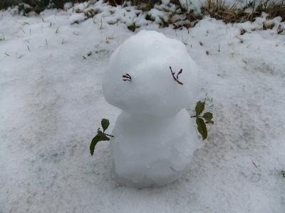 120229雪6