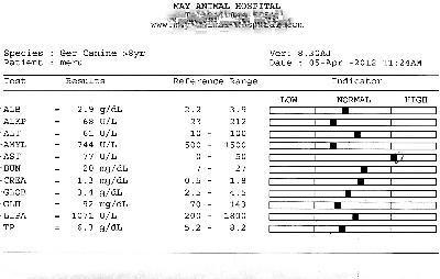 120405血液検査1