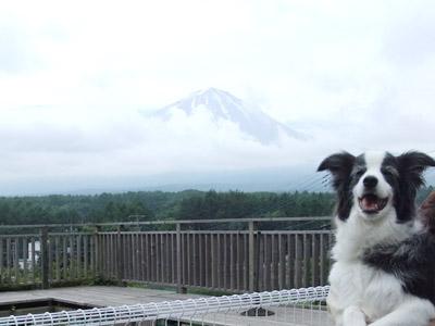 120703四季彩 富士山