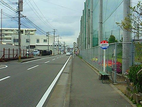 daikichi7.jpg