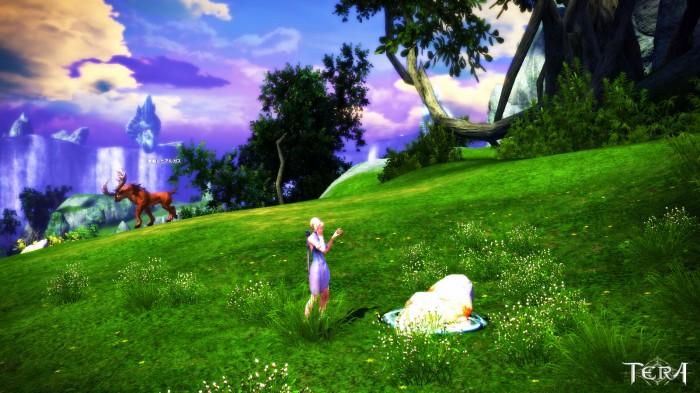 TERA_ScreenShot_20110702_205636.jpg