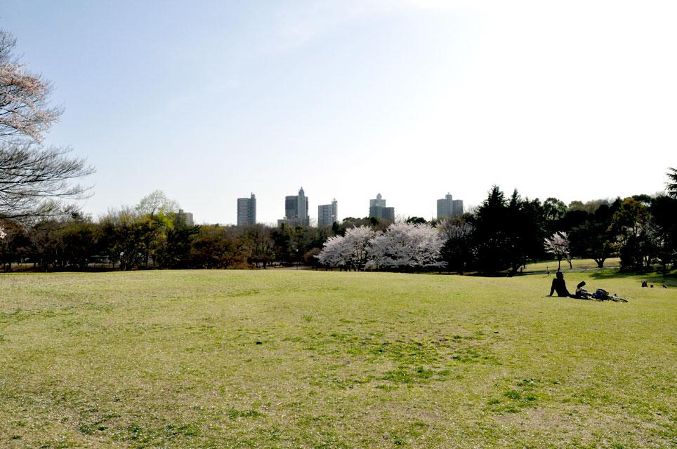 所沢航空公園_02