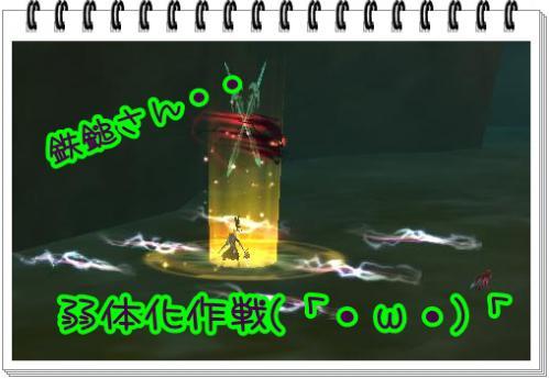 ff_20121114191854.jpg