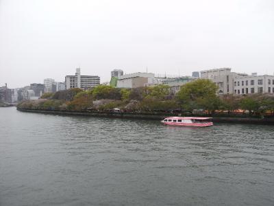 2010_04160156.jpg