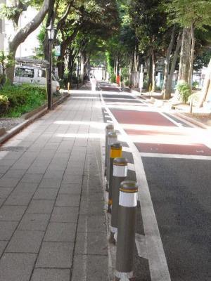 2010_08110032.jpg