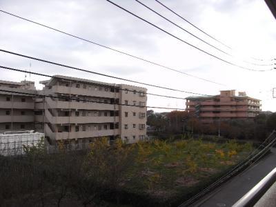 2010_11230002.jpg