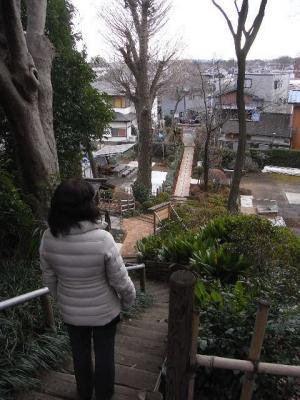 2011_01030017.jpg